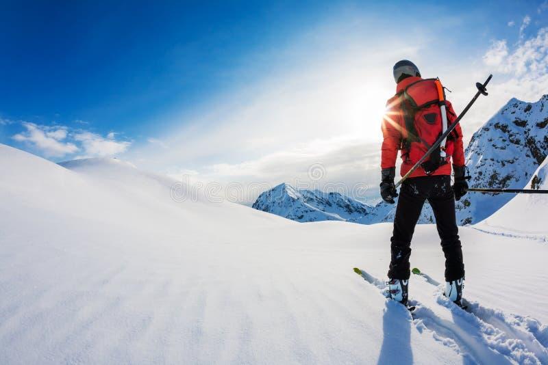 Esqui: opinião traseira um esquiador na neve do pó imagens de stock