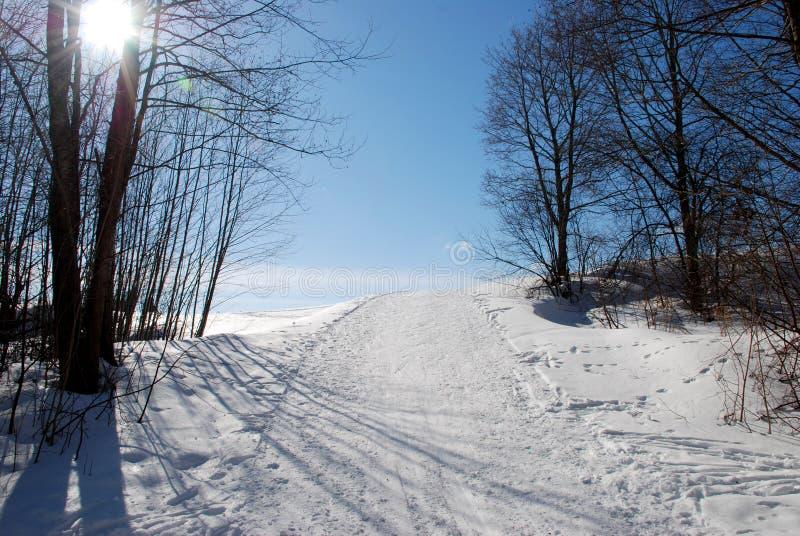 Download Esqui que visita a trilha foto de stock. Imagem de monte - 29847756