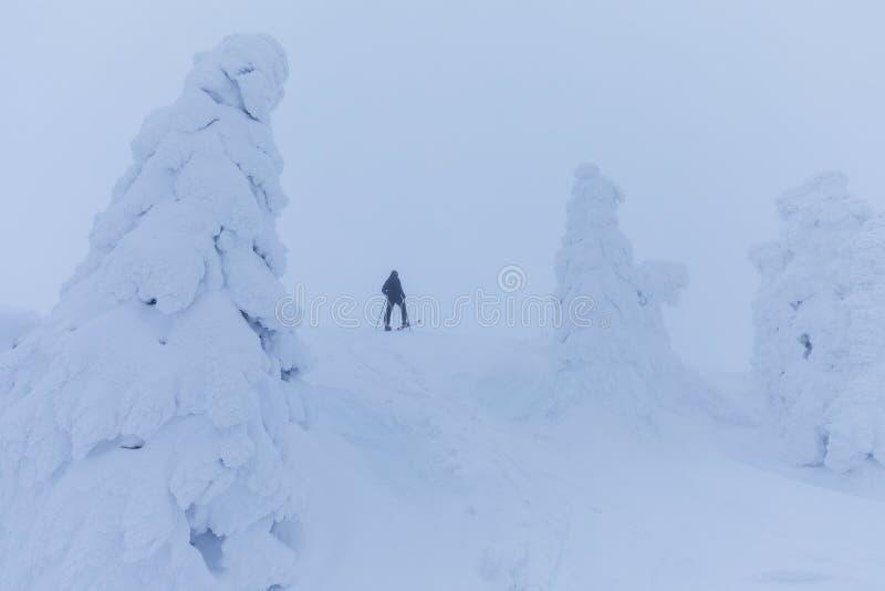 Esquiador de Backcountry que empuja a través de la niebla en una cuesta nevosa Esquí que viaja en condiciones del invierno crudo  foto de archivo