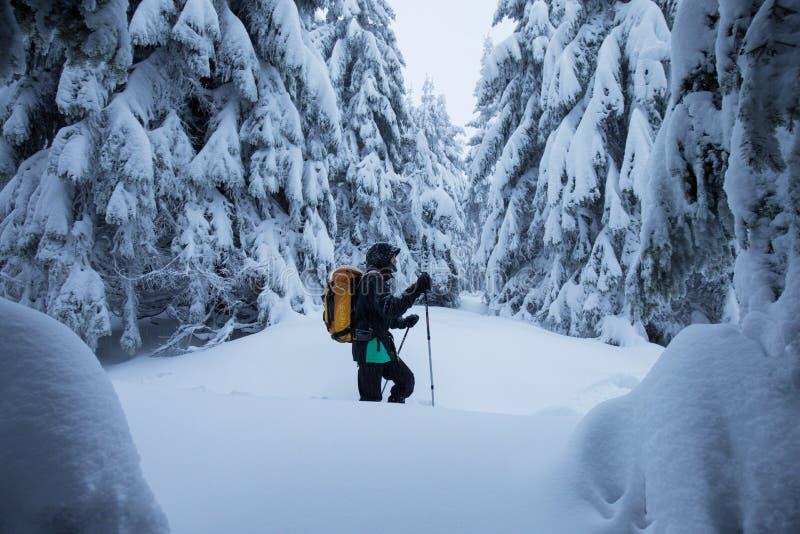 Esquiador de Backcountry que empuja a través de la niebla en una cuesta nevosa Esquí que viaja en condiciones del invierno crudo  fotografía de archivo libre de regalías