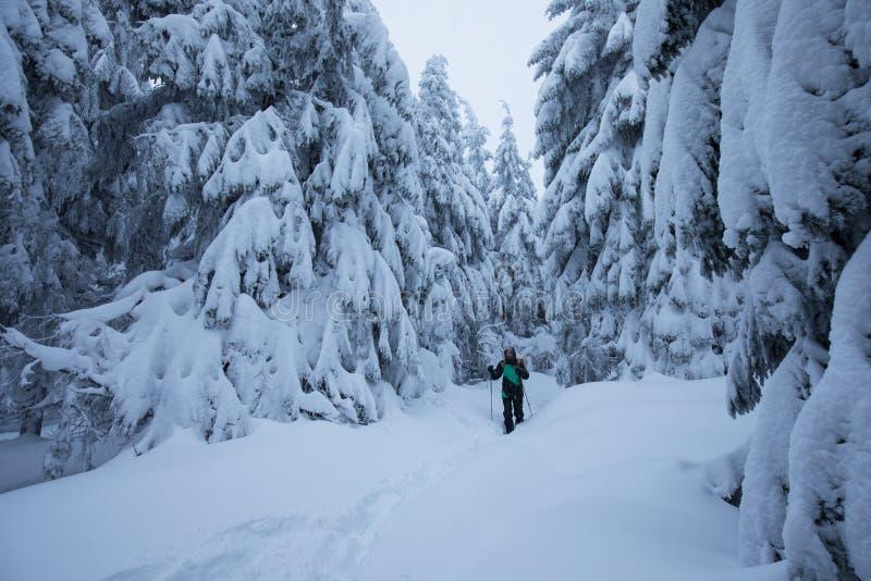Esquiador de Backcountry que empuja a través de la niebla en una cuesta nevosa Esquí que viaja en condiciones del invierno crudo  foto de archivo libre de regalías