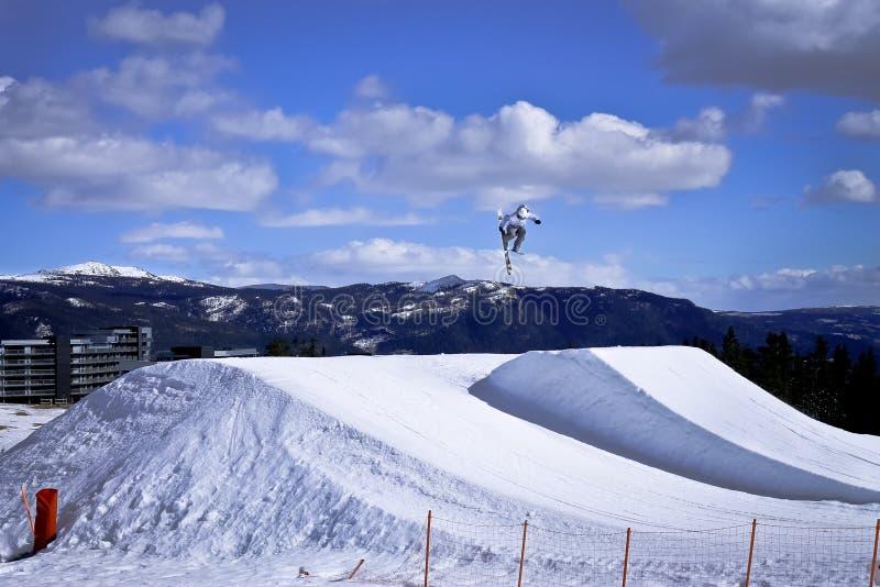 Esquiador do estilo livre que salta altamente ao fazer 360 fotografia de stock