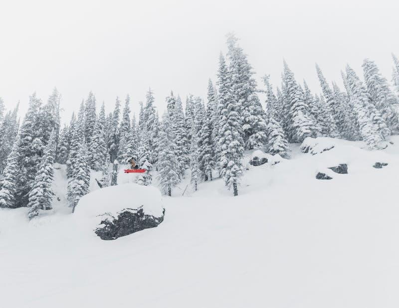Esquiador en el backcountry de un paisaje nevoso de la montaña cerca de la gama de Rossland, Canadá imagen de archivo