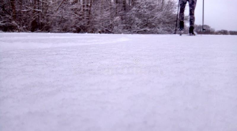 Esquiador en un camino del invierno en un fondo nevoso del papel pintado del bosque del pino fotos de archivo