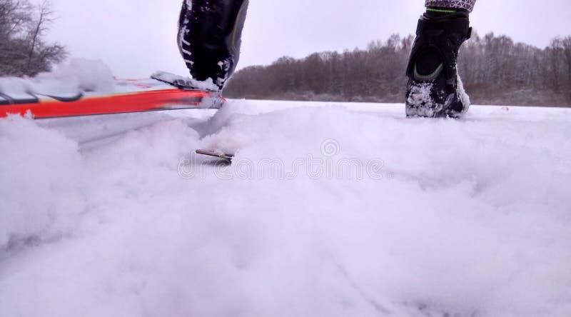 Esquiador en un camino del invierno en un fondo nevoso del papel pintado del bosque del pino fotografía de archivo libre de regalías