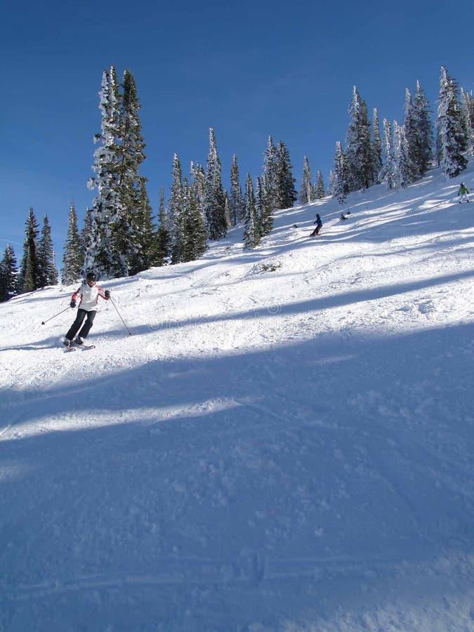 Esquiador solitario fotografía de archivo libre de regalías