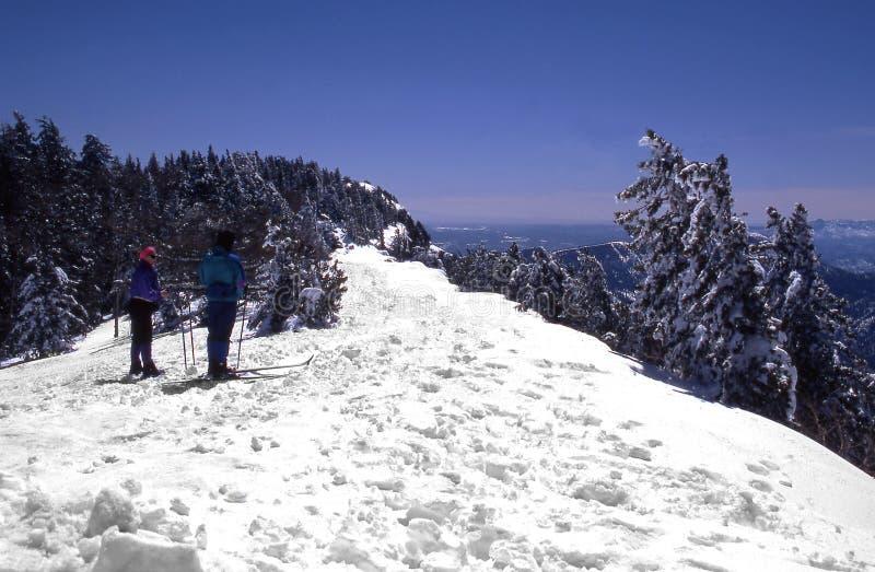 esquiadores do país transversal fotografia de stock