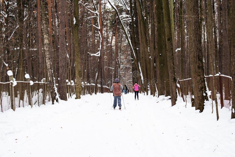 Esquiadores en el camino de la nieve en parque de la ciudad en invierno fotografía de archivo