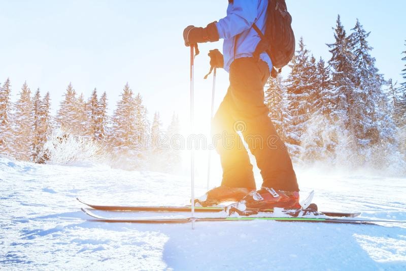 Esquiando para baixo, esquiador na floresta do inverno fotografia de stock