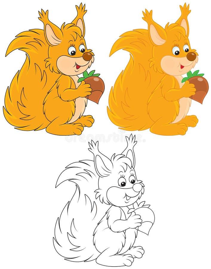 Esquilo ilustração royalty free