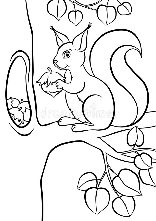 Esquilo bonito pequeno com huzelnut ilustração stock