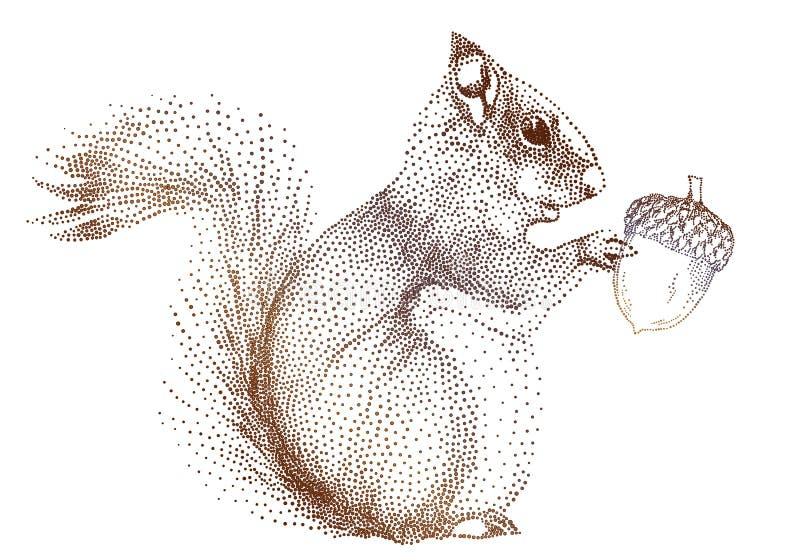 Esquilo com bolota, vetor ilustração do vetor