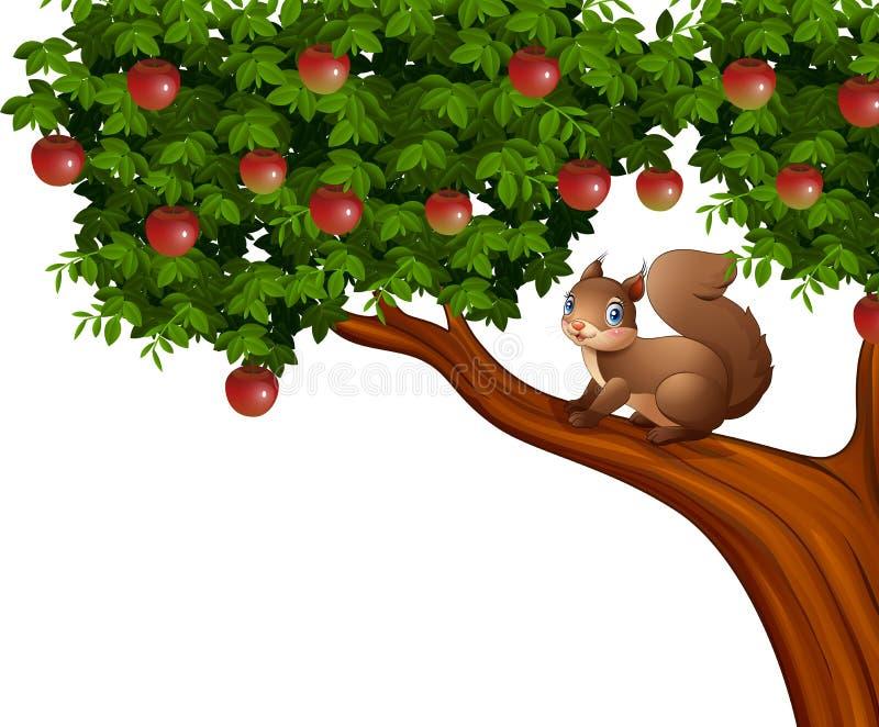 Esquilo dos desenhos animados na árvore de maçã ilustração do vetor