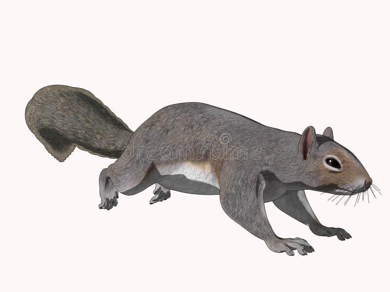 Esquilo Scambering dos desenhos animados ilustração royalty free