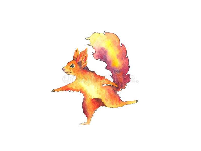 Esquilo tirado mão da aquarela isolado no fundo branco ilustração royalty free