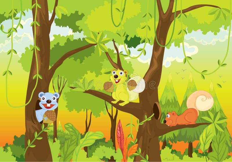 Esquilos da selva ilustração stock