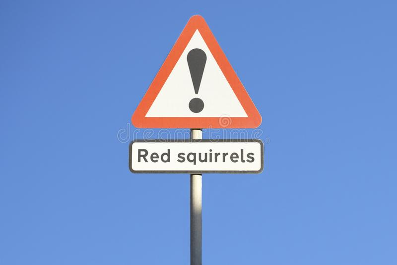 Esquilos vermelhos que advertem o sinal de estrada do perigo para a segurança dos animais e dos motoristas no campo rural foto de stock