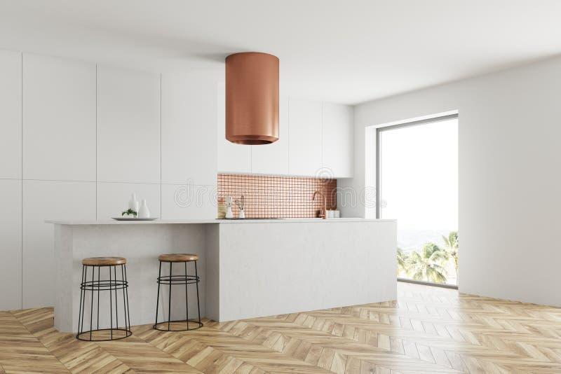 Esquina blanca y de bronce de la cocina, encimeras blancas libre illustration