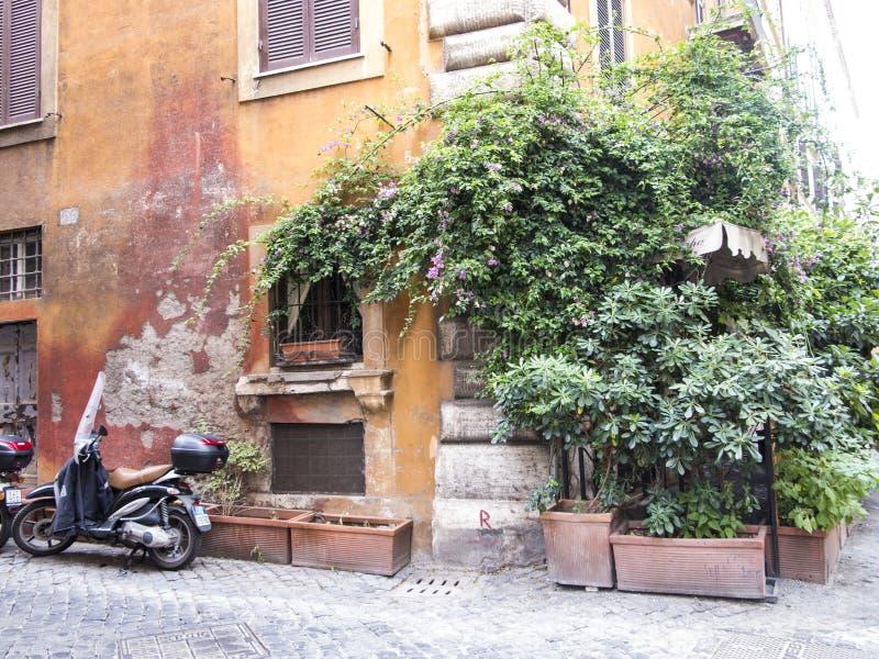 Esquina da rua verde em Roma fotos de stock