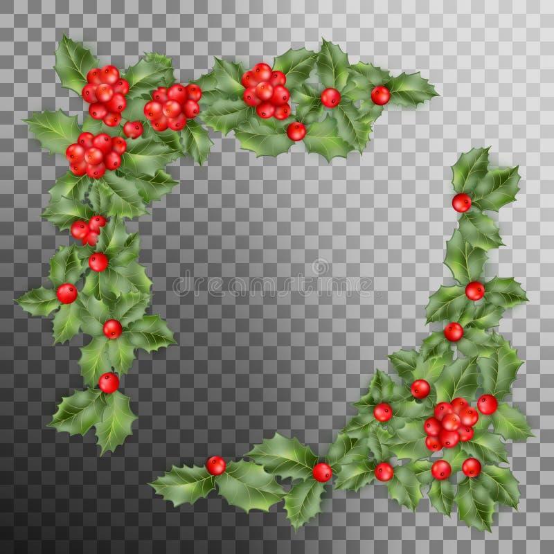 Esquina de la rama del acebo de la Navidad Vector del EPS 10 ilustración del vector