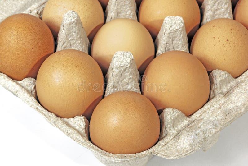 Esquina del paquete que contiene modelos de las texturas de los huevos del pollo imagen de archivo libre de regalías