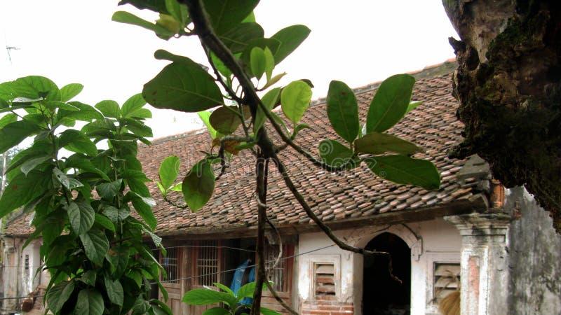 Esquina del pequeño jardín después de la casa fotos de archivo libres de regalías