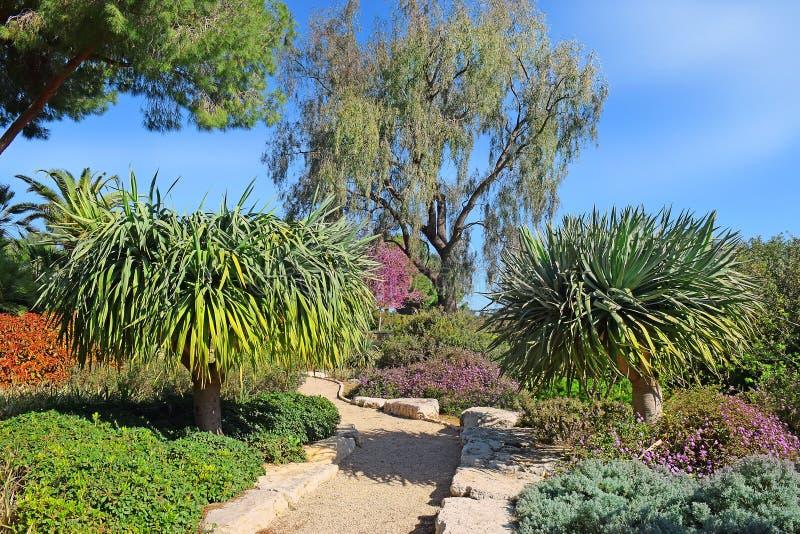 Esquina pintoresca en el parque Ramat Hanadiv, Israel imagenes de archivo
