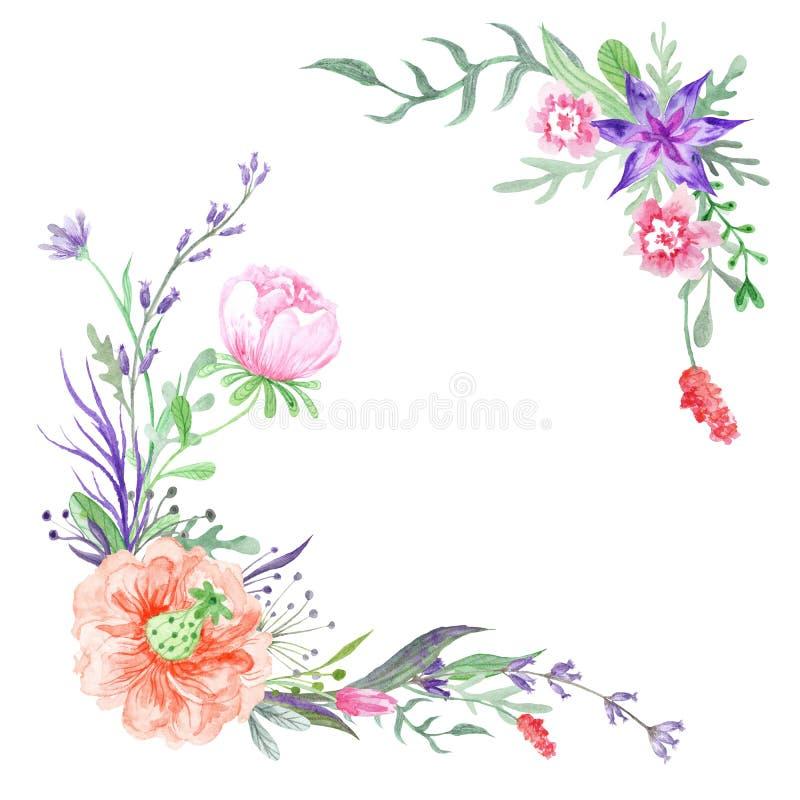 Esquinas del verano con las flores y las hierbas del prado stock de ilustración