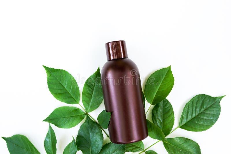 Ess?ncia erval Medicina saud?vel alternativa Cuidado de pele ?leo essencial com as folhas verdes isoladas no fundo branco imagem de stock