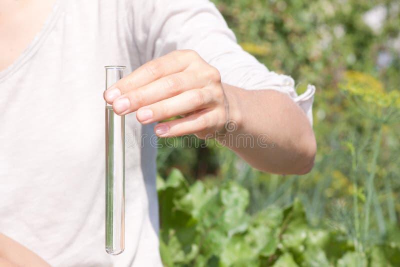 Essai de pureté de l'eau photo libre de droits