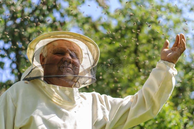 Essaim d'apiculteur et d'abeille photos stock