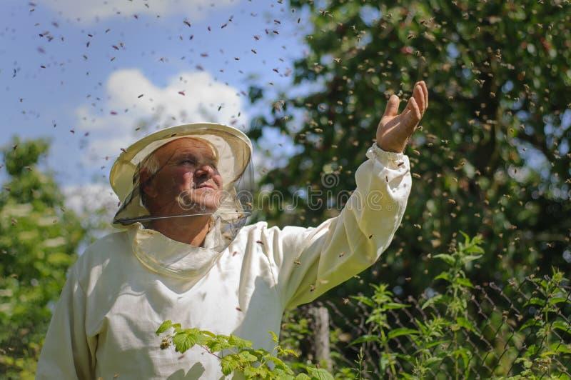 Essaim d'apiculteur et d'abeille images stock