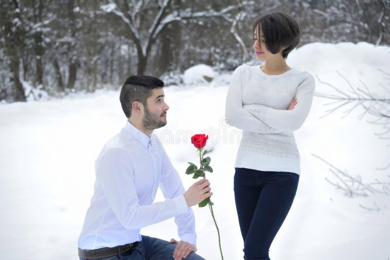 Essais d'homme à faire des excuses avec Rose image stock
