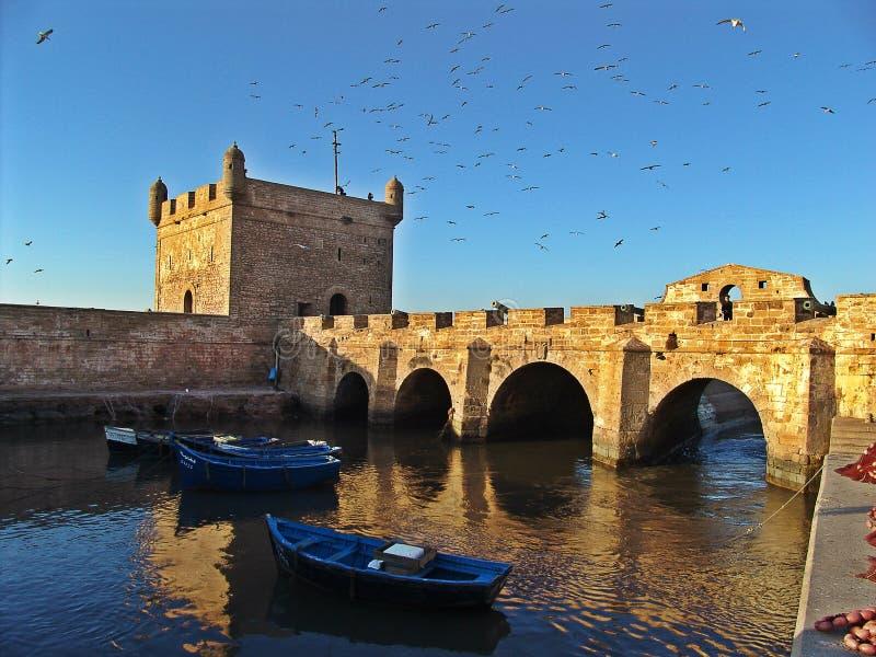 Essaouira gammal port i Marocko royaltyfria foton