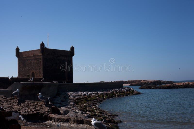 Essaouira, Maroc, Afrique image stock