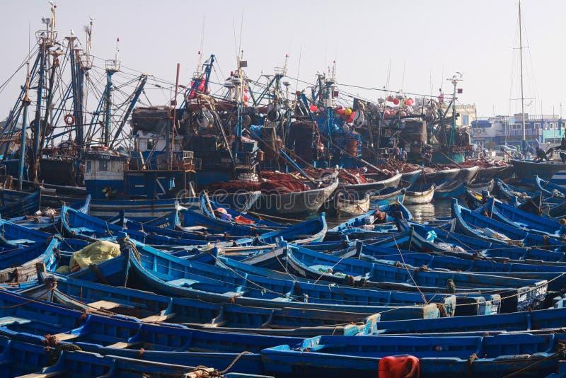 ESSAOUIRA MAROCKO - SEPTEMBER 29 2011: Otaliga blåa fiskebåtar sammanpressade tillsammans i en fullständigt förorsaka kramp i ham royaltyfri foto