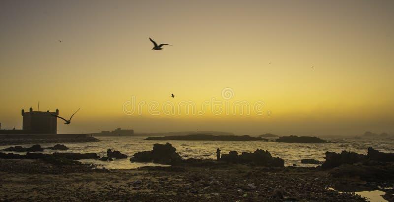 Essaouira, Marrocos, África imagem de stock