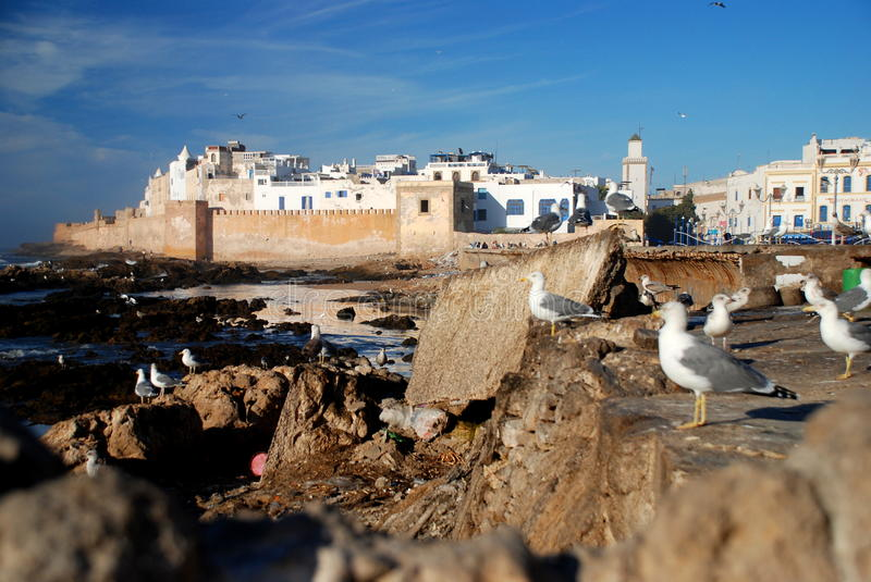 Essaouira. Morocco royalty free stock images