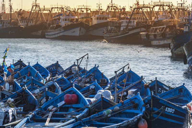 Essaouira, Morocco - November 26th 2018: Blue fishing boats in the harbor in Essaouira, Morocco royalty free stock images