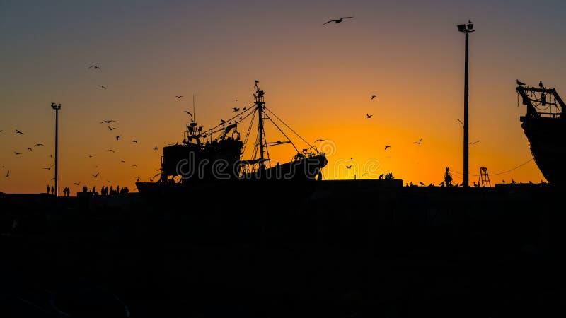 Essaouira port w Maroko, sylwetka obraz royalty free