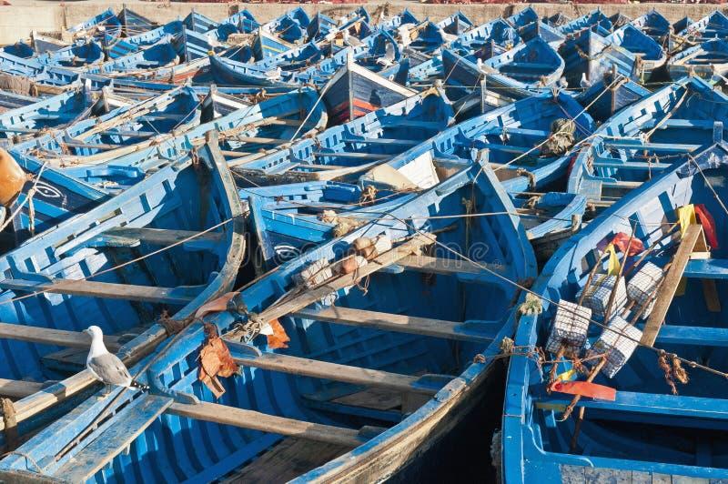 essaouiramorocco seaport royaltyfria foton