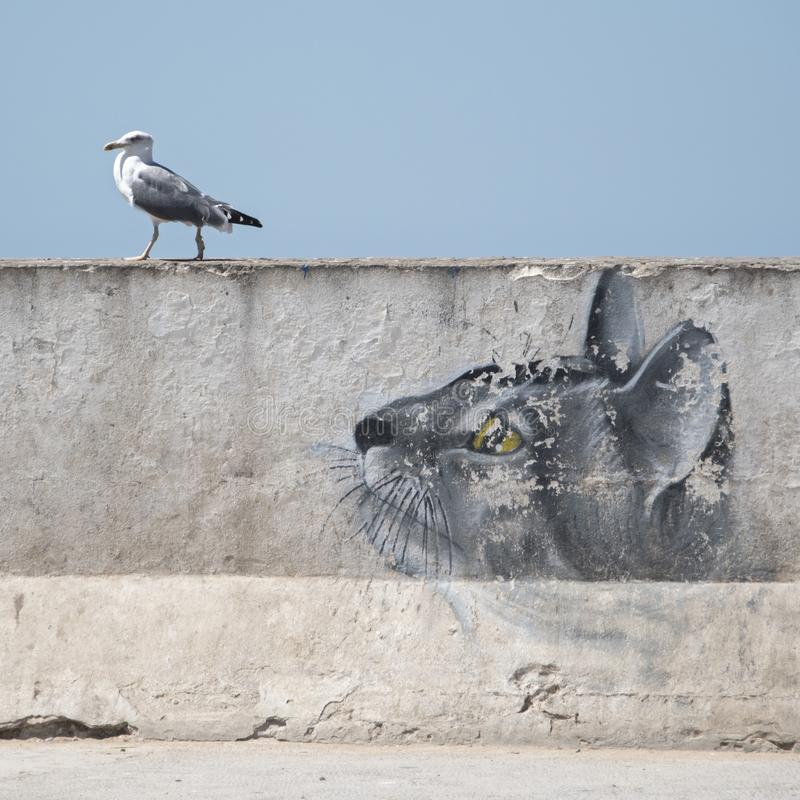 Sea gull on the harbour wall is being watched by a `cat` painted on the wall stock image