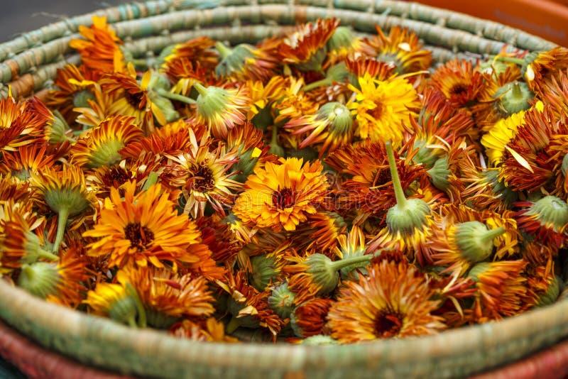 Essbare Blumen lizenzfreies stockfoto