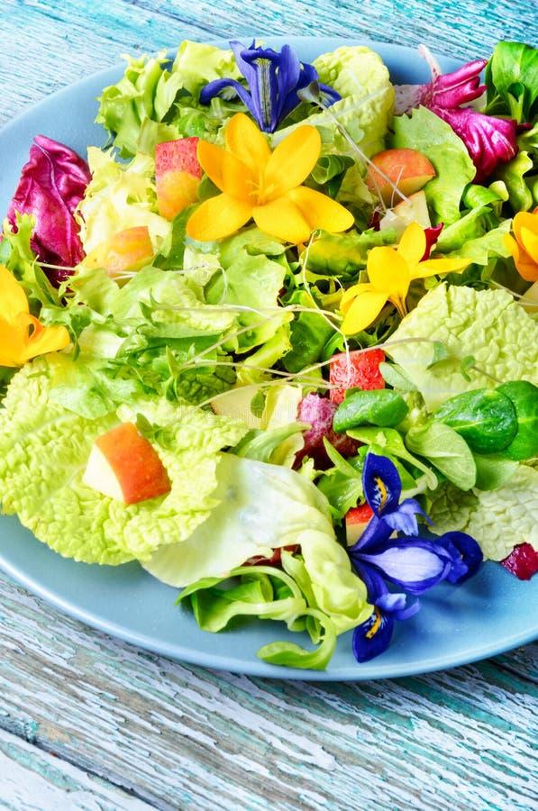 Essbarer Blumensalat lizenzfreies stockfoto