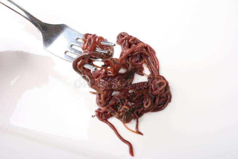 Essen der Endlosschrauben stockfotos