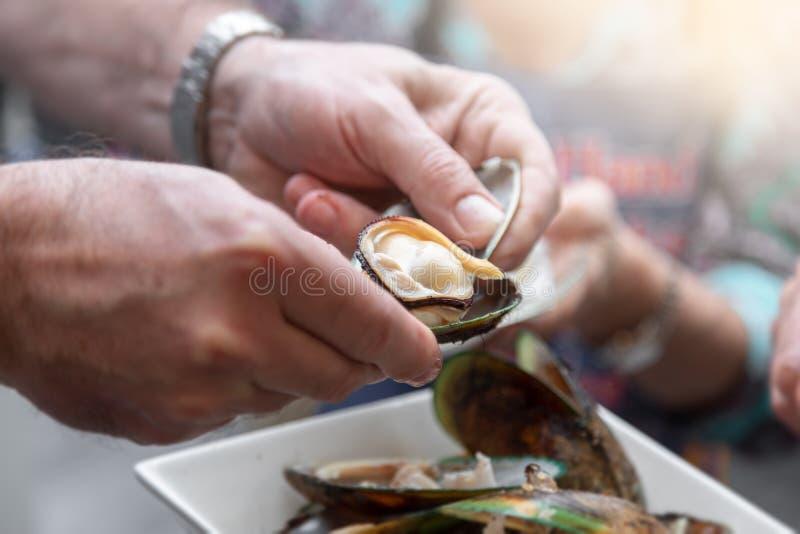 Essen der Miesmuschel in Neuseeland stockfotos