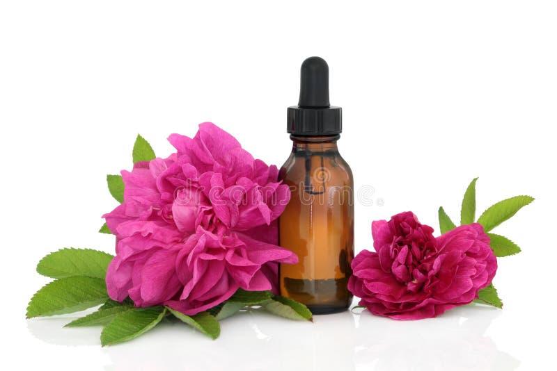 Essence de fleur de Rose photos stock