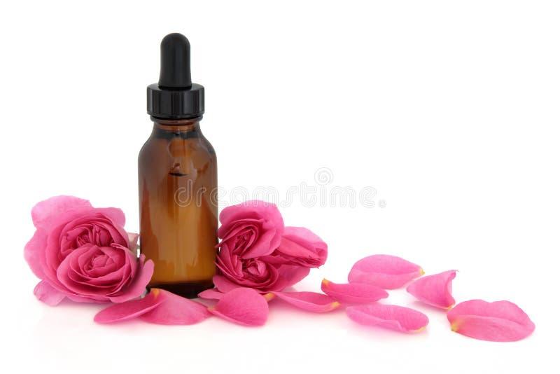 Essence de fleur de Rose image stock