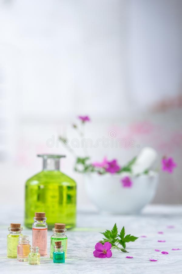 Essence de géranium essentielle en fleurs de bouteille et de géranium, huile essentielle de géranium de pré image stock