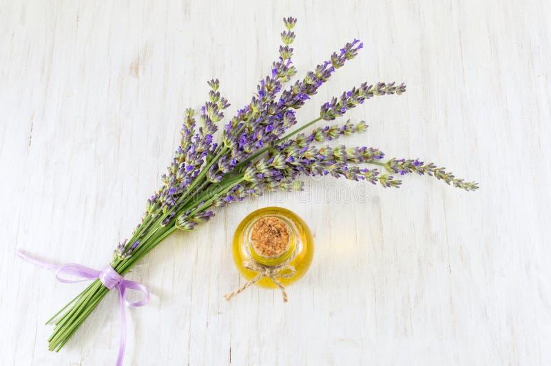 Essence de lavande avec des branches de fleur fraîche photographie stock libre de droits
